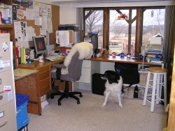 My officeand Harold