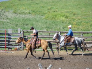 larger cowboys
